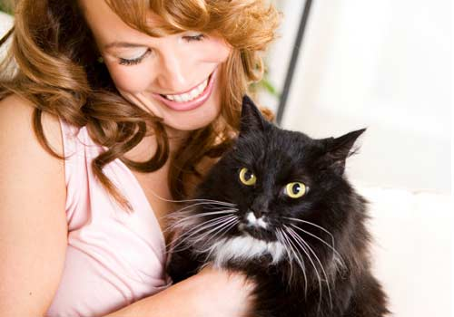 Useful things you should know if you have a cat